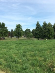 City Lots for Sale - Hutchinson, MN